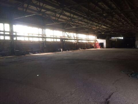 Производственно-складские здания, 2269 м2 - Фото 5