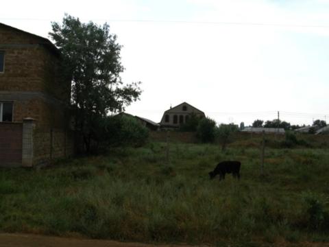 Продажа участка, Орловка, Красногвардейский район, Улица Колосистая - Фото 2