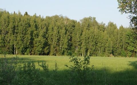 Продажа участка, Шуринцево, Ивановский район - Фото 3