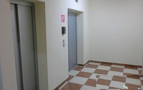 Крупногабаритная, однокомнатная квартира с новым ремонтом. - Фото 3