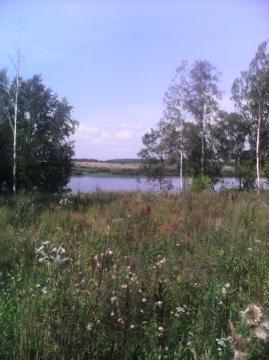 Купить земельный участок в деревне Захарьино, Новгородского района - Фото 1
