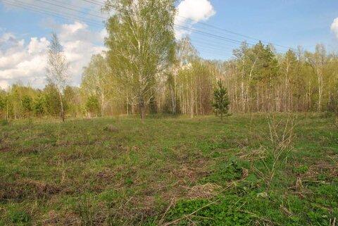 Продам: земельный участок 25 соток - Фото 3