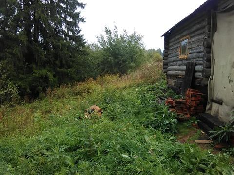 Дача в Бершети почти даром - Фото 3