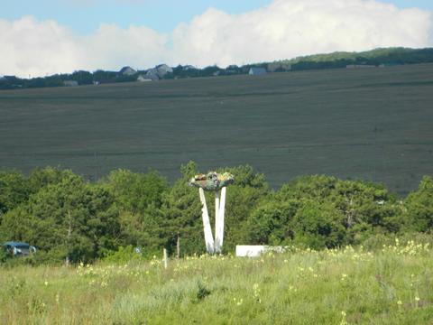 Видовой участок в Приятном Свидании Крым - Фото 4