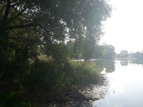 Продаю земельный участок в черте города - Фото 3