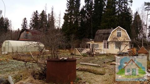 Продается крайний к красивому лесу садовый зимний дом - Фото 2
