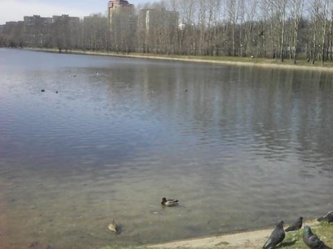 Продается Двухкомн. кв. г.Москва, Кастанаевская ул, 60к2 - Фото 2