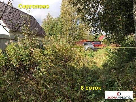 "Участок 6 соток в Сертолово, СНТ ""Ромашка"" - Фото 2"