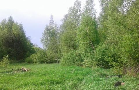 Участок ИЖС 25 сот. п. Ларионово. - Фото 3
