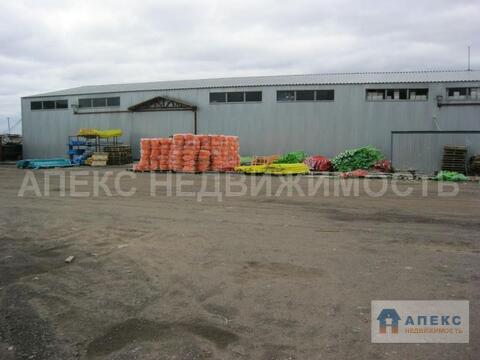 Аренда склада пл. 840 м2 Томилино Новорязанское шоссе в складском . - Фото 2