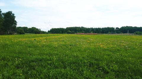 1га для ЛПХ, окраина деревни Ненашево, граничит с оврагом и прудиком - Фото 1