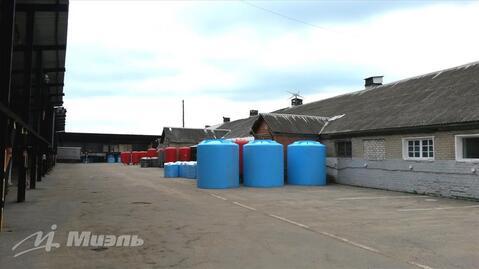 Продам склад, деревня Бузланово - Фото 3