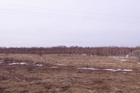Продается участок 588 соток в деревне Лизуново - Фото 2