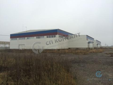 Сдам производственный комплекс 4500 кв.м. - Фото 4
