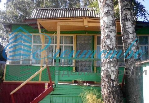 Продажа дачи, Барлак, Мошковский район - Фото 4