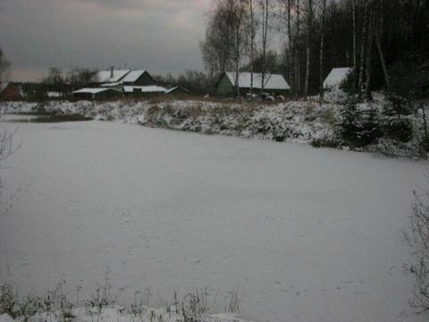 Участок 15 соток с берёзами Фряновское ш 40 км от МКАД д Малые Петрищи - Фото 3