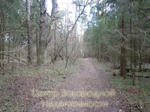 Участок, Рублево-Успенское ш, Ильинское ш, 26 км от МКАД, Маслово д. . - Фото 5