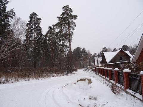 Участок с соснами, на жилой улице, п. Исток, черта Екатеринбурга - Фото 2