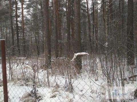 Продается земельный участок в Щелковском районе пос.Загорянский - Фото 4