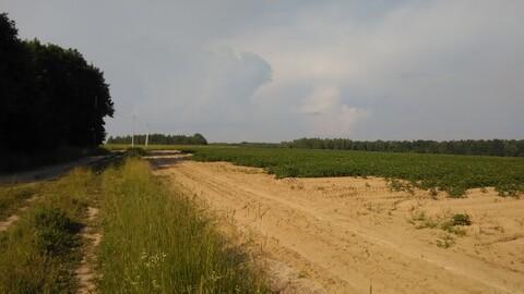 Продается ровный, сухой земельный участок, площадью 71,4 га - Фото 4