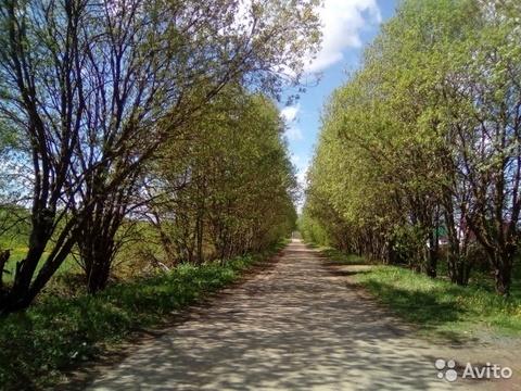 15 сот. ИЖС д.Никитское, ул.Зеленая. Клин - Фото 3