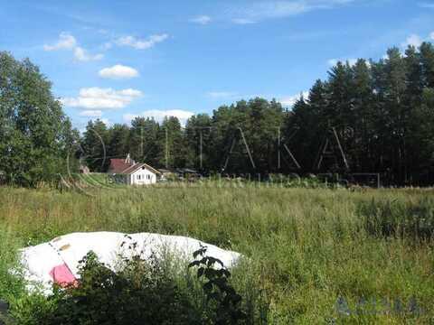 Продажа участка, Громово, Приозерский район - Фото 4