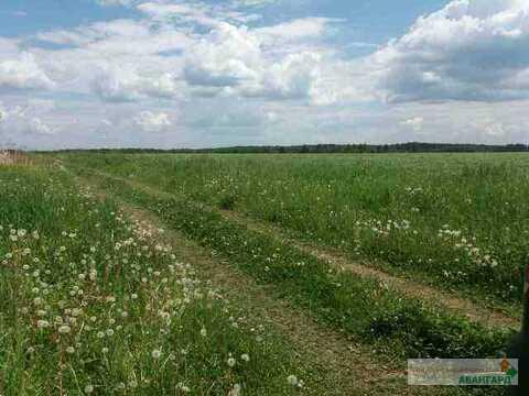 Продается земельный участок, Электросталь, 13.9 сот - Фото 2