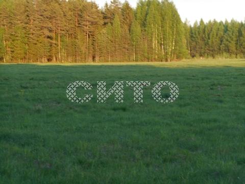 Продажа участка, Рыжково, Череповецкий район - Фото 2