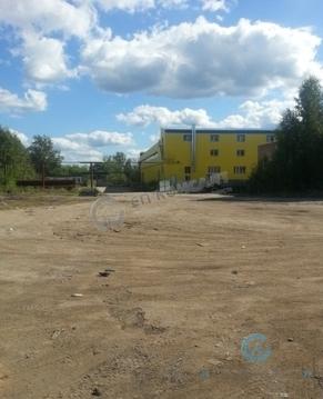 Продажа земельным участком 21 сотка с капитальным зданием - Фото 2