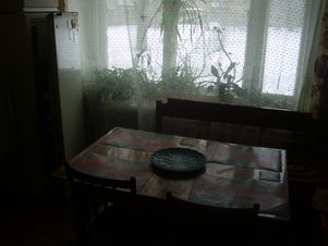 Аренда квартиры, Александров, Александровский район, Ул. Революции - Фото 2