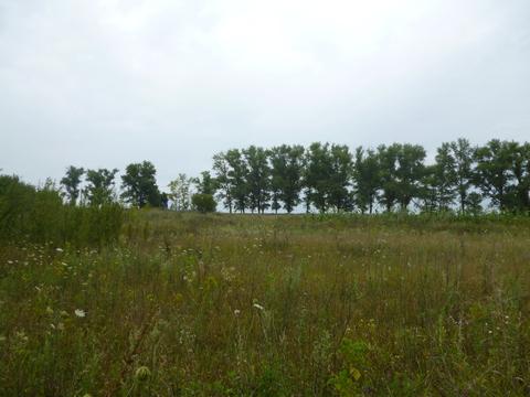 Земельный участок - Фото 2