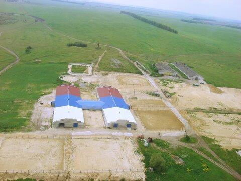 Действующее сельхоз. предприятие,180 км от Мск, г.Михайлов с. Помозово - Фото 2