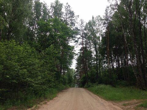 Продажа участка, Алуферово, Пушкиногорский район - Фото 2