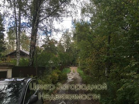 Участок, Ярославское ш, Щелковское ш, 17 км от МКАД, Загорянский пгт. . - Фото 2