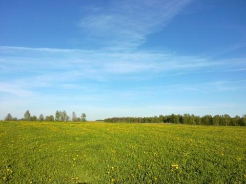 Земельный участок 5 га в 2 км от Калуги под базу отдыха - Фото 2