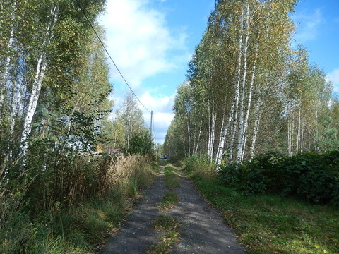 Павлово-Посадский район - Фото 1