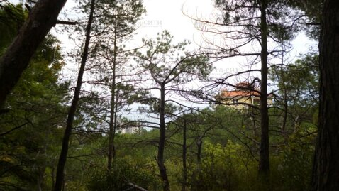 Продается великолепный участок площадью 25 соток в Алупке - Фото 5