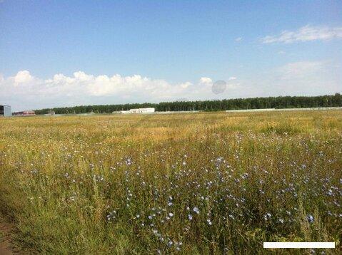 Продается земельный участок, Кулешовка д, 250 сот - Фото 4