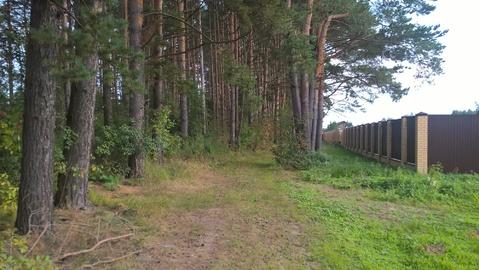 Земельный участок 10 соток д.Игуменка Тверская область - Фото 1