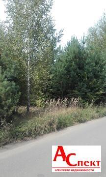Участок в селе Чертовицы - Фото 2