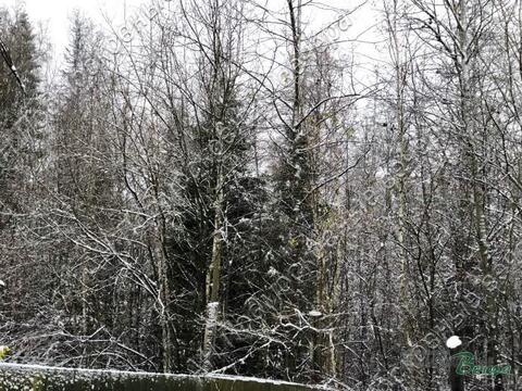 Минское ш. 33 км от МКАД, Сивково, Участок 9 сот. - Фото 1