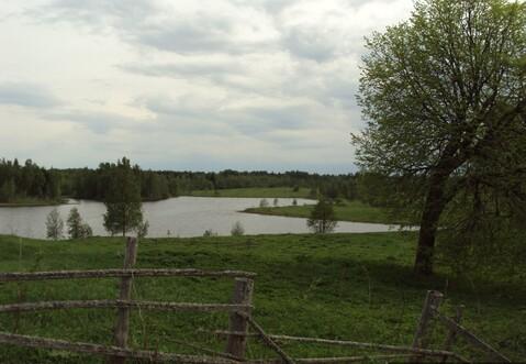Продажа земельного участка в Маревском районе, Малое Демкино ИЖС - Фото 4