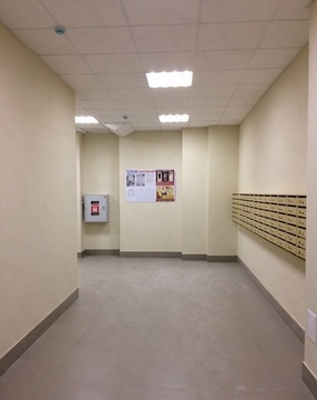 2 комнатная квартира в Солнечном - Фото 3