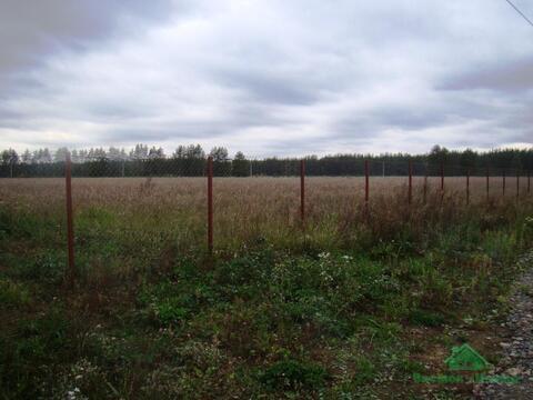 4,2 Га под сельхоз.назначение в д.Курбатово - 95 км Щёлковское шоссе - Фото 3