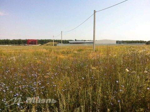 Продажа участка, Кулешовка, Липецкий район - Фото 3