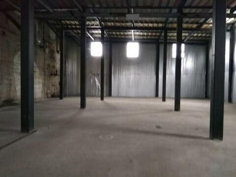Сдам складское помещение 700 кв.м, м. Ломоносовская - Фото 3