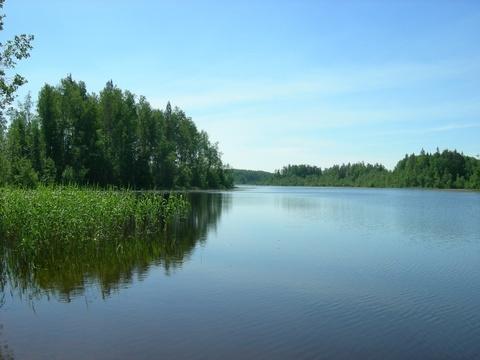 Участок 1 Га рядом с озером - Фото 1
