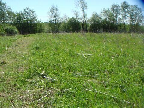 Продам участок 15 соток, Фермерское хоз, Горная Шальдиха д, 57 км . - Фото 4