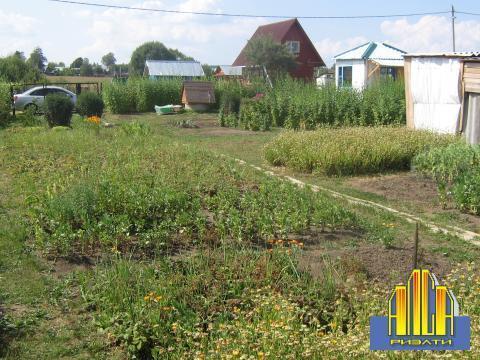 Зуп-257 Земельный участок в с/т в районе деревни Мошницы. срочно! - Фото 4