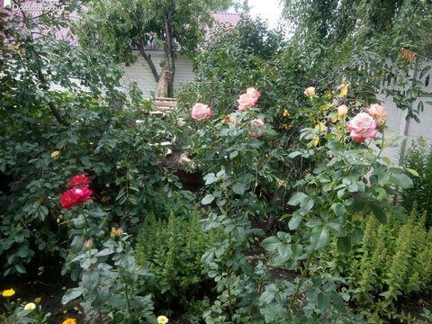 Аренда дома, Белгород, Ул. Дальняя Садовая - Фото 3